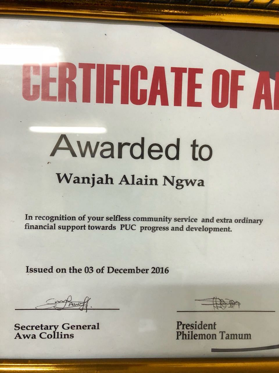 Alino Alino's Awards of the Most Innovative Cameroonian in the Diaspora