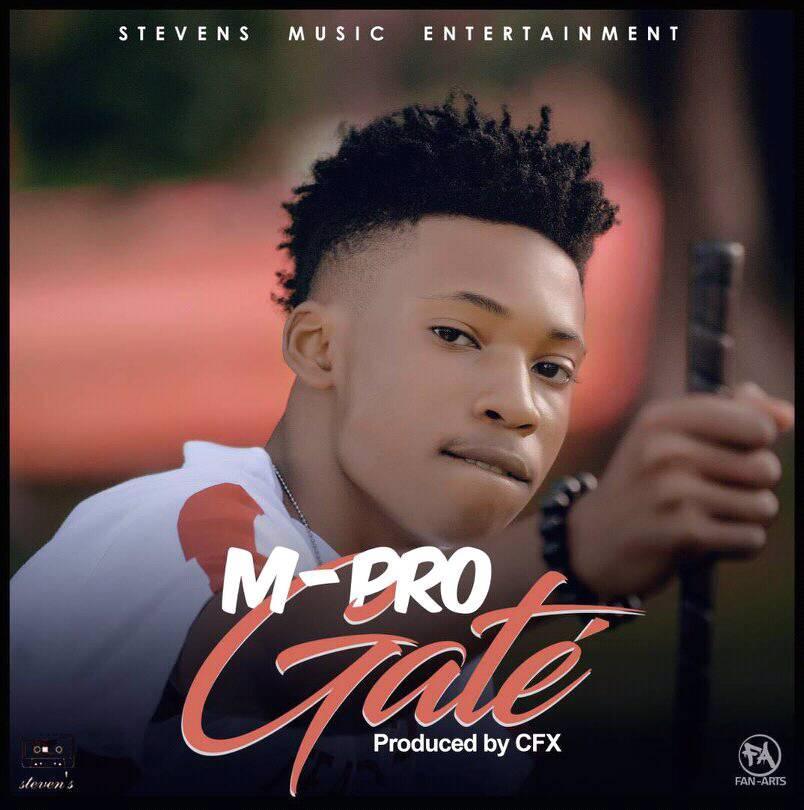M-Pro - Gate