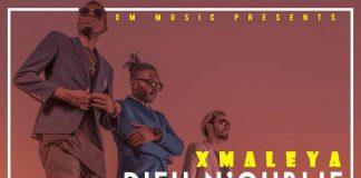 X-Maleya-Dieu-Noublie-Personne artwork