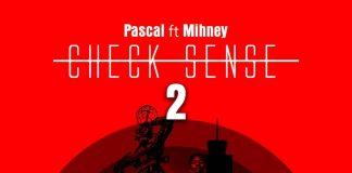 pascal-ft-Mihney-Checksense-2