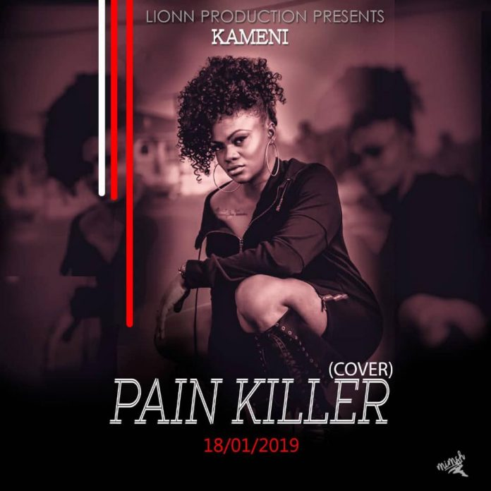 Kameni Pain Killer Cover