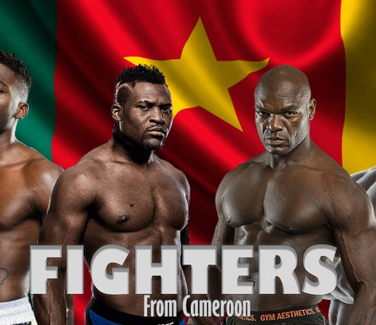 Top Pro Fighters From Cameroon (2020)