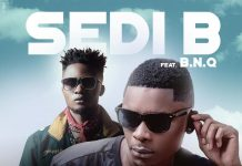 """Star in me"" - Sedi B x B.N.Q"